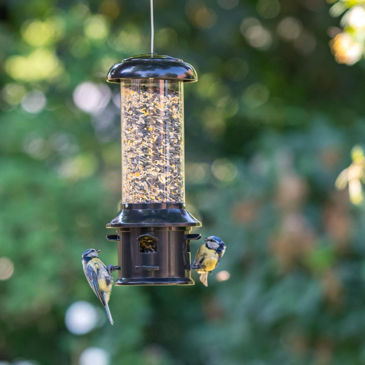 Silo Hermes pour petits oiseaux