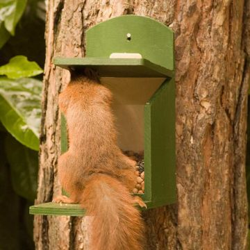 Wooden Squirrel Feeder