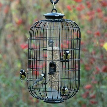Coffret Silo et cage de protection pour petits oiseaux apollo