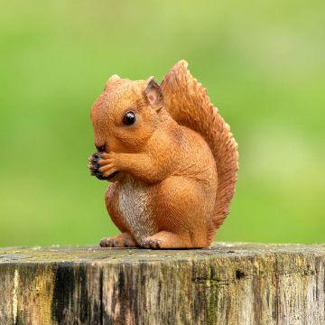 Statuette Bébé écureuil roux