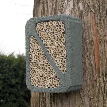 WoodStone® Insect Block - Grey
