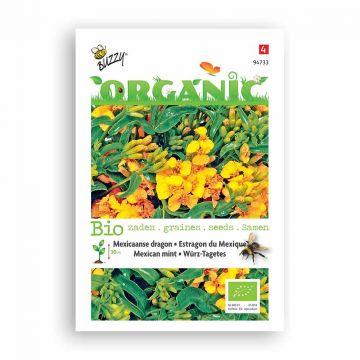 Buzzy® Organic Estragon du Mexique BIO