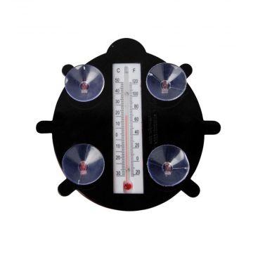 Thermomètre coccinelle
