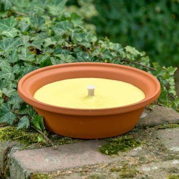 Bougie d'extérieur recyclée dans coupelle - citronnelle