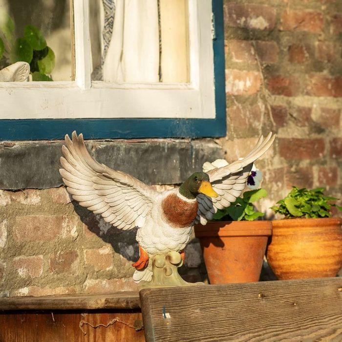 Canard (en vol)