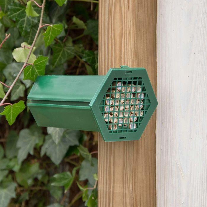 Nichoir pour abeilles solitaires
