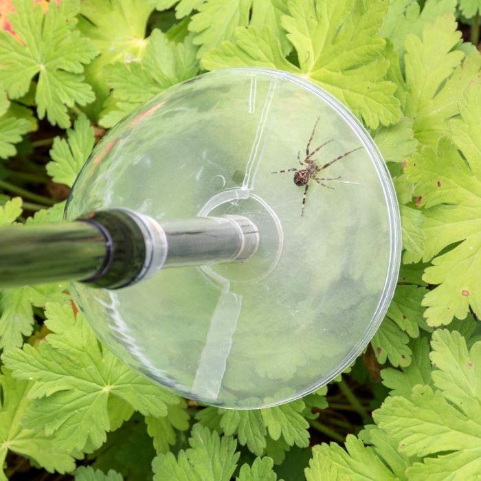 Piège à insectes BugAway (Longue)