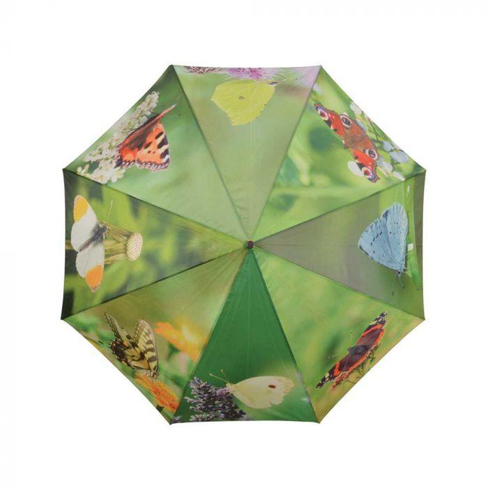 Parapluie avec papillons
