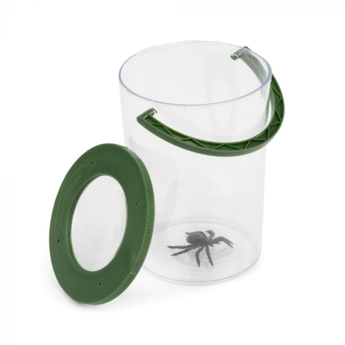Observatoire pour insectes Wallace