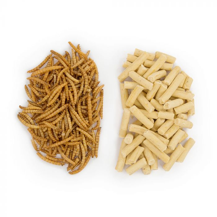50/50 Paquet vers de farine et friandises