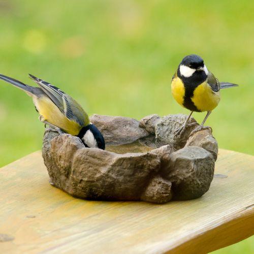 Levico Bird Bath