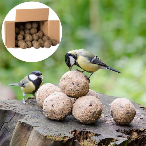 Boîte de 50 boules de graisse avec insectes
