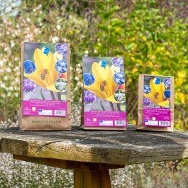 Mélange de bulbes bio pour abeilles et papillons