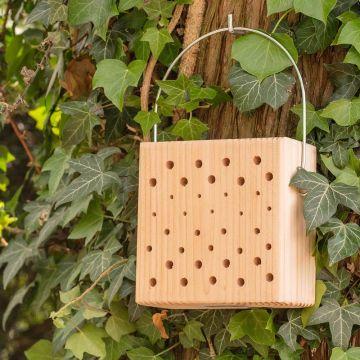 Bloc pour insectes Lanzarote