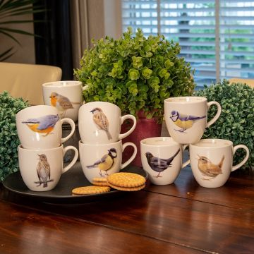Coffret de tasse oiseaux du jardin (Elwin van der Kolk)