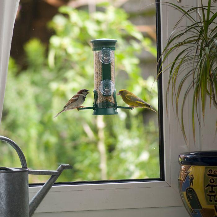 Silo à graines pour fenêtre