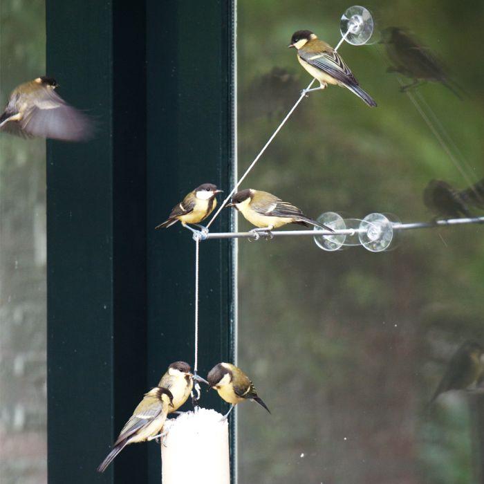 Support pour fenêtre BirdSwing XXL