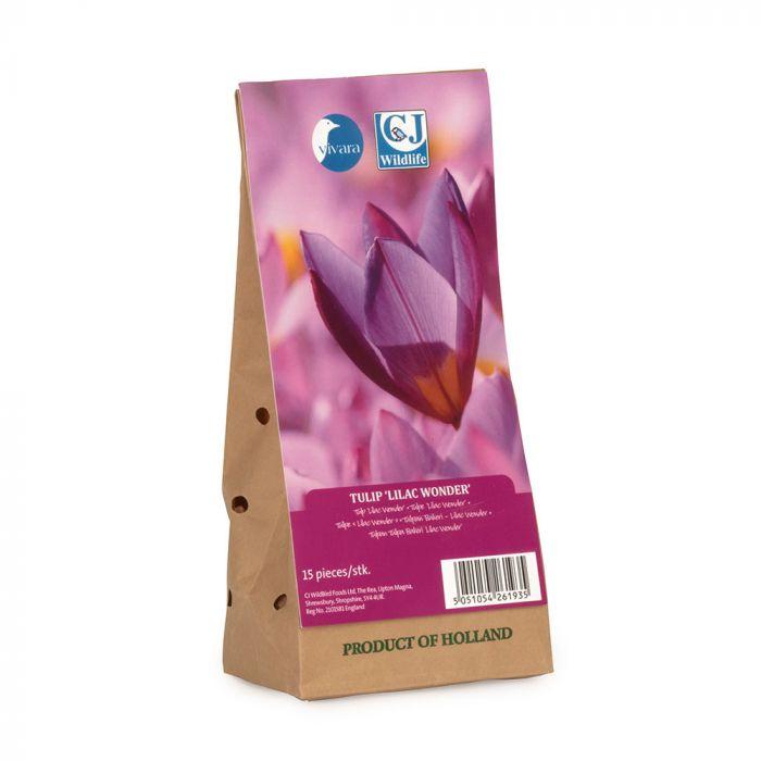 Tulipe 'Lilac Wonder'