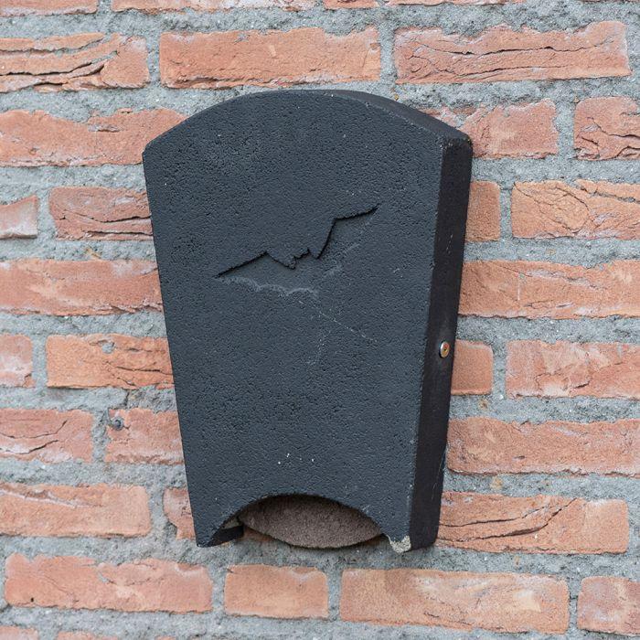 Gîte pour chauves-souris Beaumaris Midi