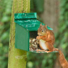 Mangeoire XXL pour écureuils